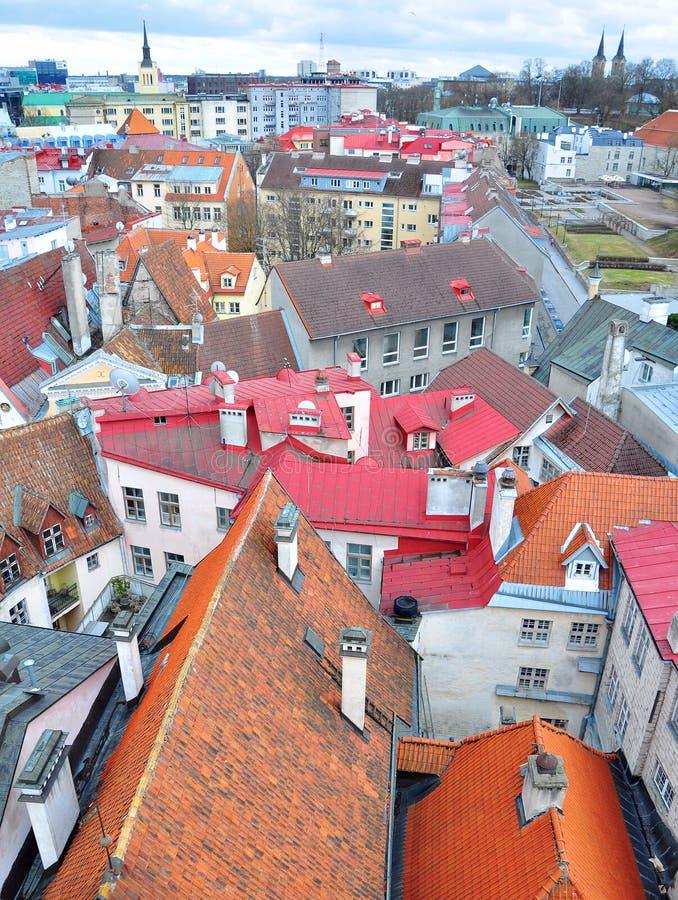 Download Tallinn cityscape stock photo. Image of europe, terracota - 33687874