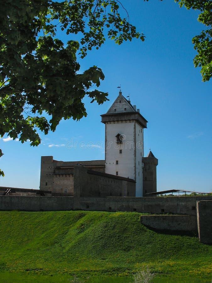 tallinn El castillo medieval europa Las hojas verdes están en el primero plano y el cielo azul está en fondo imagen de archivo