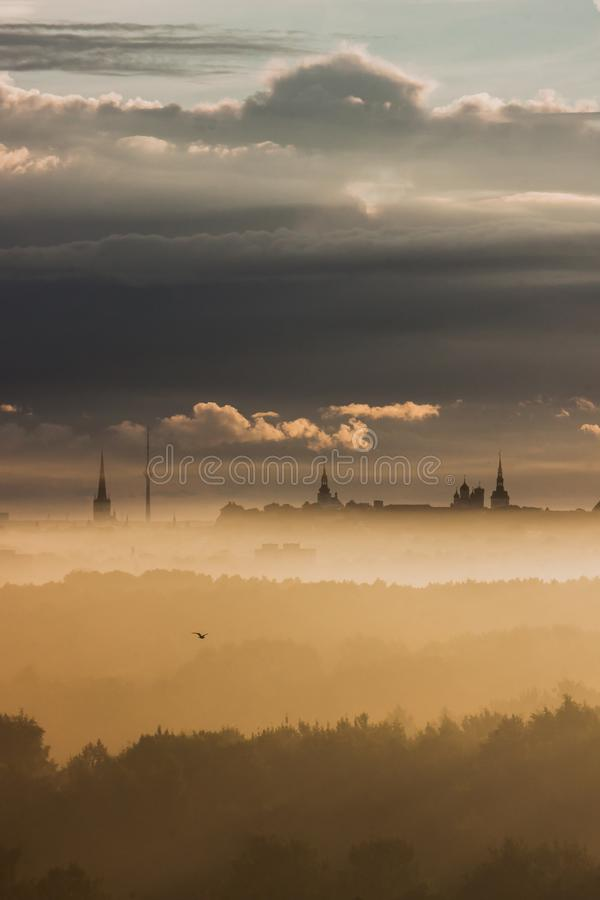 Tallinn em uma manhã nevoenta foto de stock royalty free