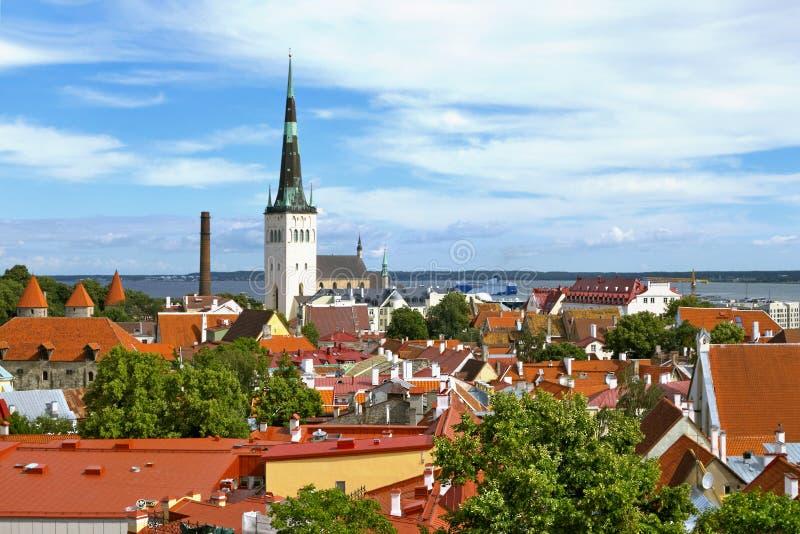 Tallinn en verano fotos de archivo
