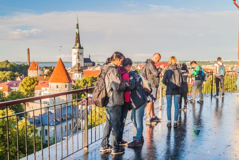 TALLINN ESTLAND - AUGUSTI 23, 2016: Folket håller ögonen på horisont av den gamla staden av Tallinn från Patkuli som beskådar Pla royaltyfri bild