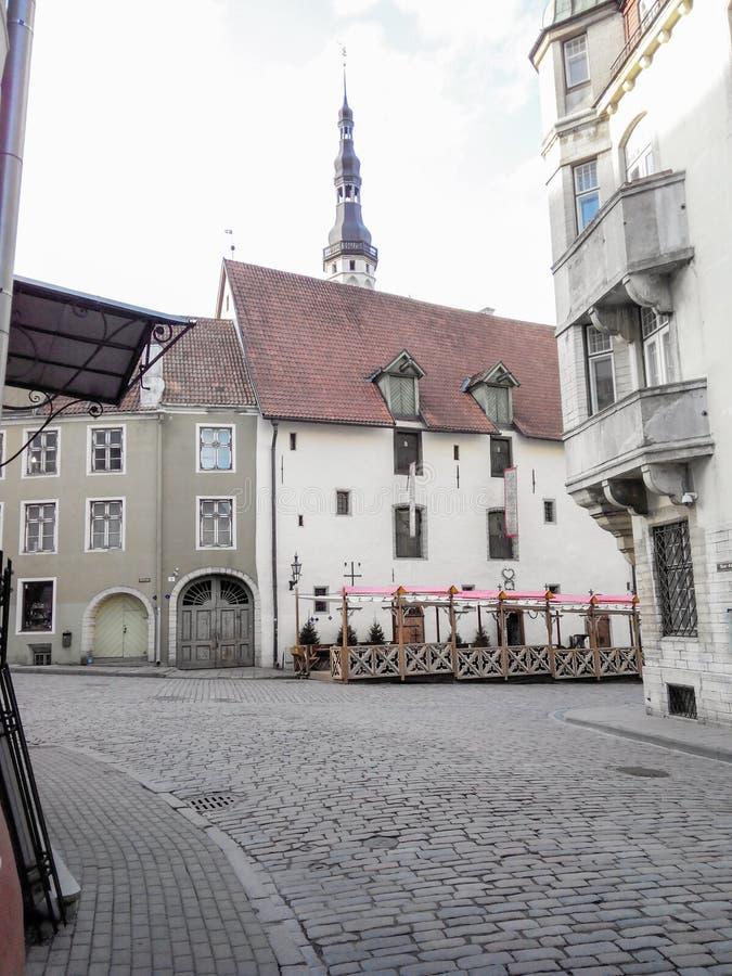 Tallinn, Estland, gator och hus på den gamla staden, inga personer arkivbilder