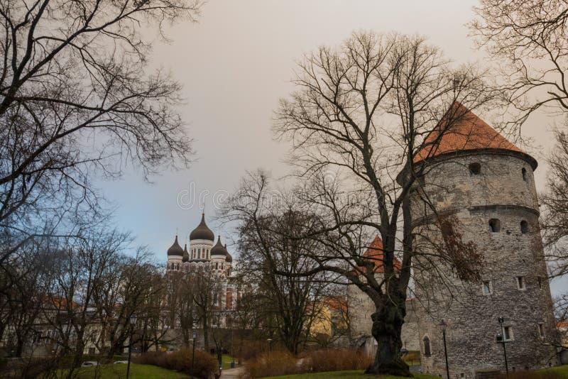 Tallinn Estland: Kiek i de Kok Museum och bastiontunneler i medeltida Tallinn defensiv stadsvägg Sikt av Alexander Nevsky arkivbild