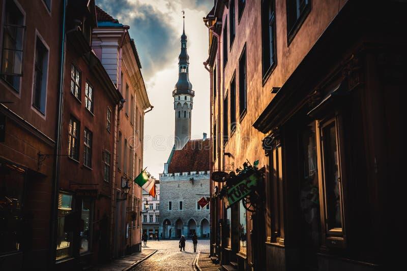 TALLINN, ESTLAND - 01. November 2019: Blick auf das Rathaus von Tallinn durch die Mundi-Straße morgens lizenzfreies stockbild
