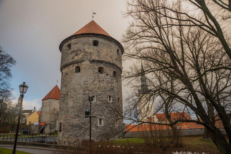 TALLINN ESTLAND: St Nicholas 'kyrka, Niguliste kirik Kiek i de Kok Museum och bastiontunneler i medeltida Tallinn defensiv arkivbild