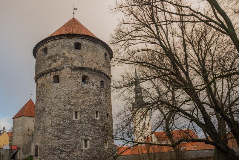 TALLINN ESTLAND: St Nicholas 'kyrka, Niguliste kirik Kiek i de Kok Museum och bastiontunneler i medeltida Tallinn defensiv royaltyfria bilder