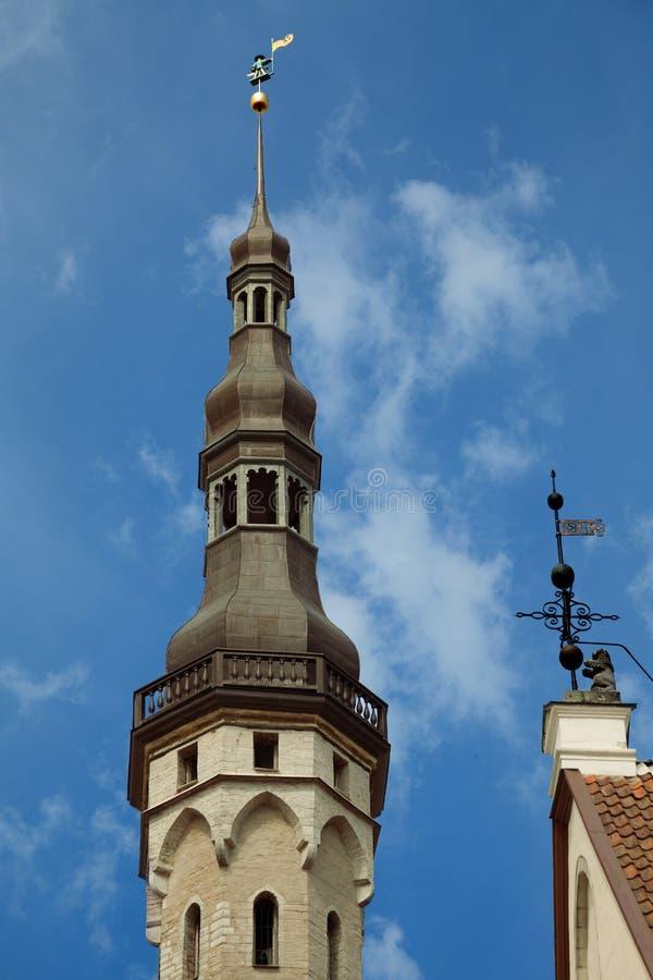 TALLINN ESTLAND - stadshusbyggnaden med väder fåfänga gamla Thomas Gamla Thomas Vana Toomas är en av symbolerna och guardiaen arkivbilder