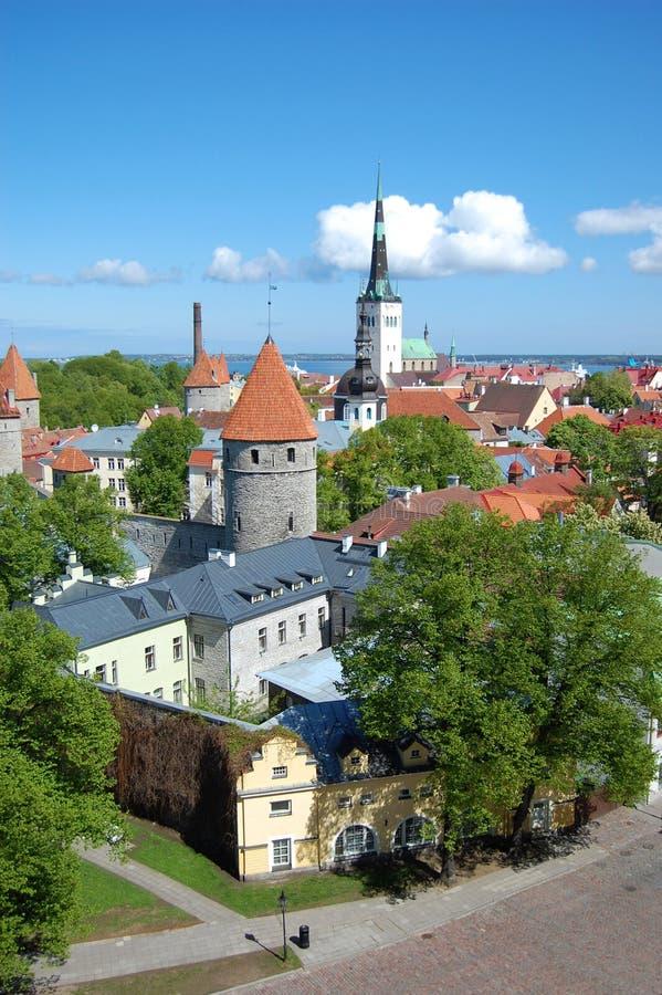 Tallinn estonia zdjęcie royalty free