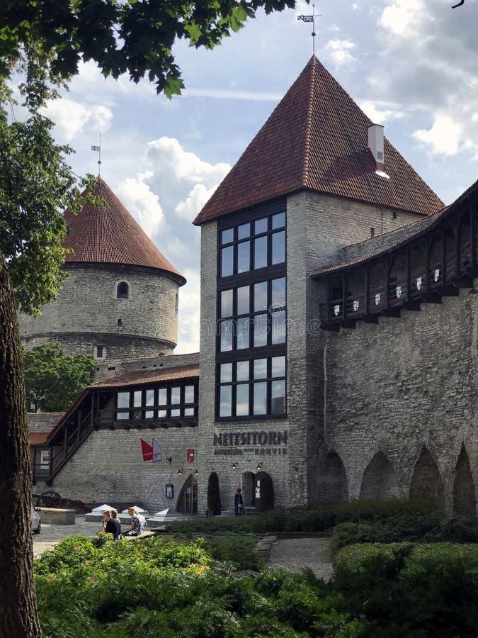 Tallinn, Estonia, August 2018. Neitsitorn Maiden`s Tower stock images
