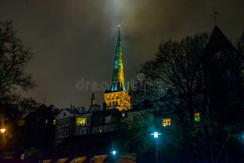Tallinn, Estonia: Chiesa della st Olaf La guglia della chiesa è illuminata Bella vecchia città con le case e gli alberi alla nott fotografia stock