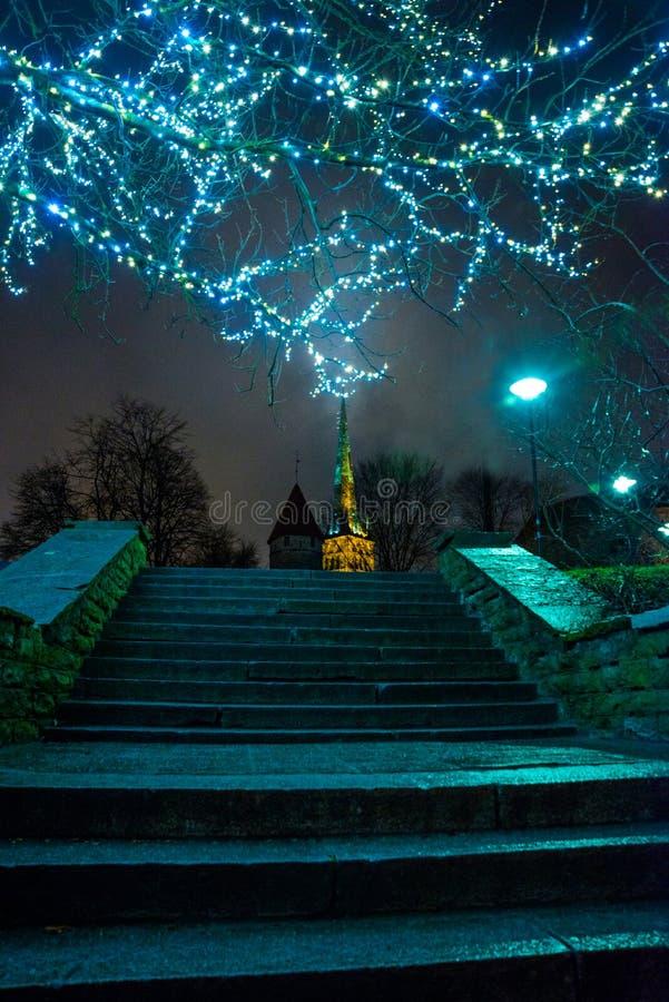 Tallinn, Estonia: Iglesia de St Olaf El chapitel de la iglesia y las guirnaldas iluminadas los árboles en la noche Los pies lleva fotografía de archivo