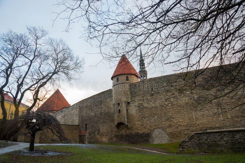Tallinn, Estonia: Kiek in de Kok Museum and Bastion Tunnels in medieval Tallinn defensive city wall. UNESCO world heritage site. Popular tourist destination in stock photo