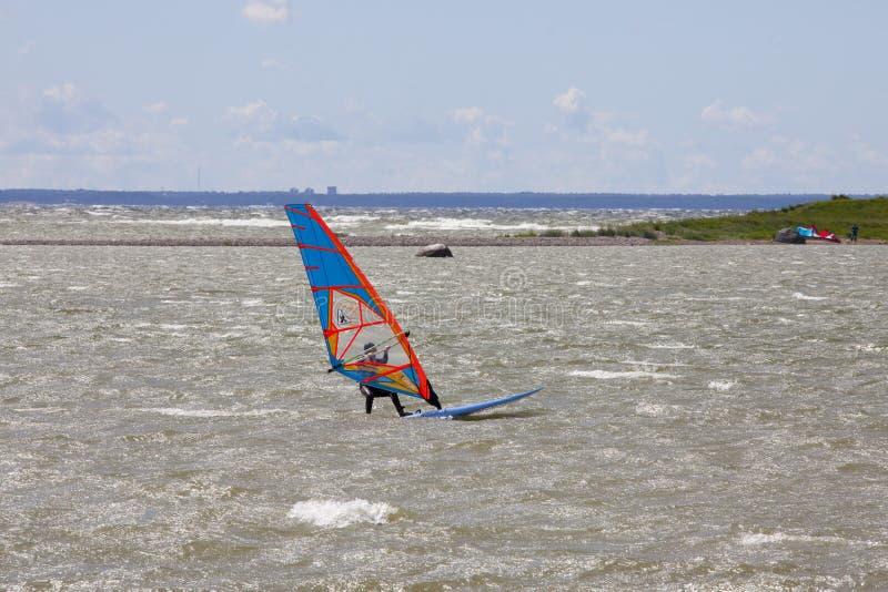 Tallinn, Estonia LIPIEC 10: Wiatrowy surfing w morzu bałtyckim Tallinn, zdjęcia stock