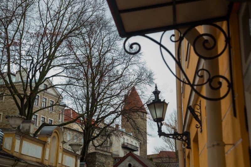 Tallinn, Estonia: Paesaggio di autunno Vecchia torre della fortezza con il tetto rosso fotografia stock libera da diritti