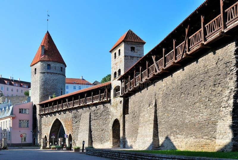Tallinn, Estonia. Pared antigua de la fortaleza fotos de archivo