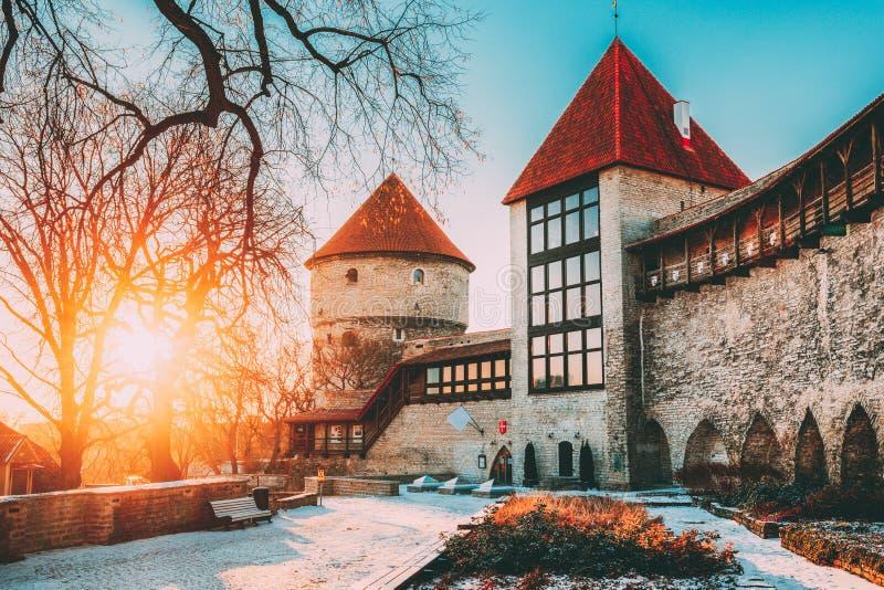 Tallinn, Estonia Torre anterior Neitsitorn de la prisión en Tallinn vieja Torre virginal medieval en la salida del sol del invier imagen de archivo libre de regalías