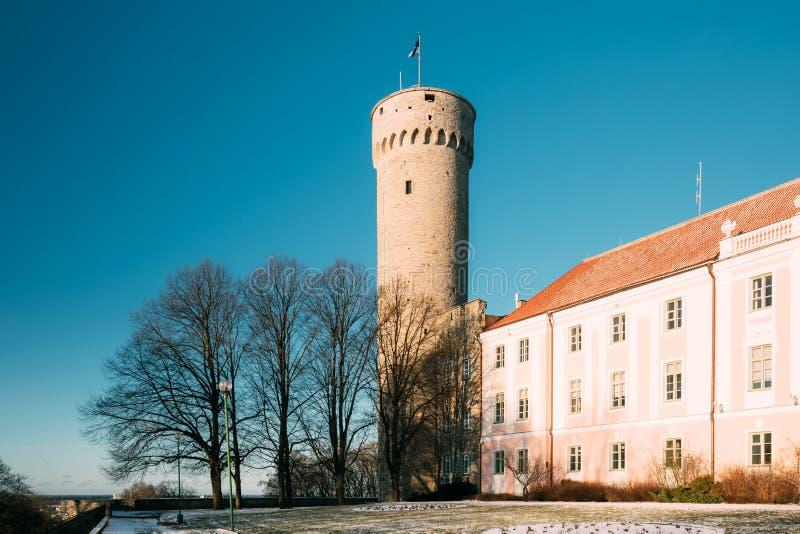 Tallinn, Estonia. View Of Upper Town Castle Corner Tower Tall Hermann royalty free stock images
