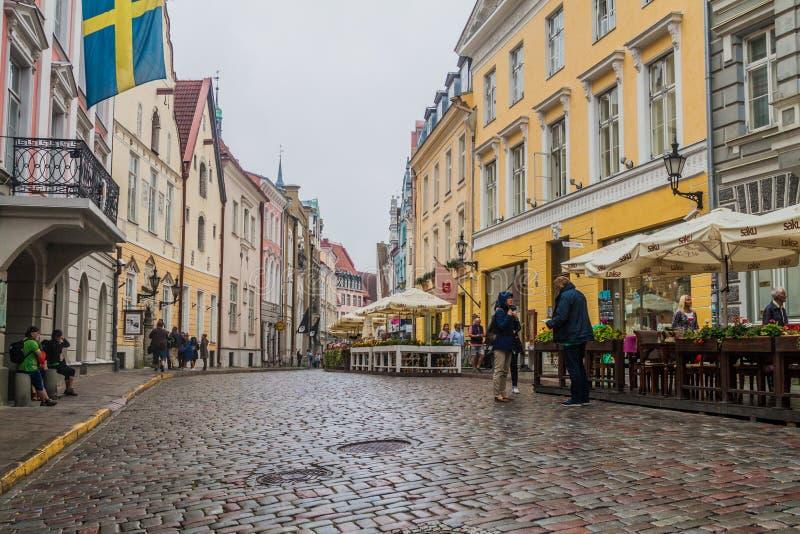 TALLINN, ESTONIE - 22 AOÛT 2016 : Les gens marchent le long de la rue pavée en cailloutis de Pikk dans la vieille ville de Tallin images libres de droits