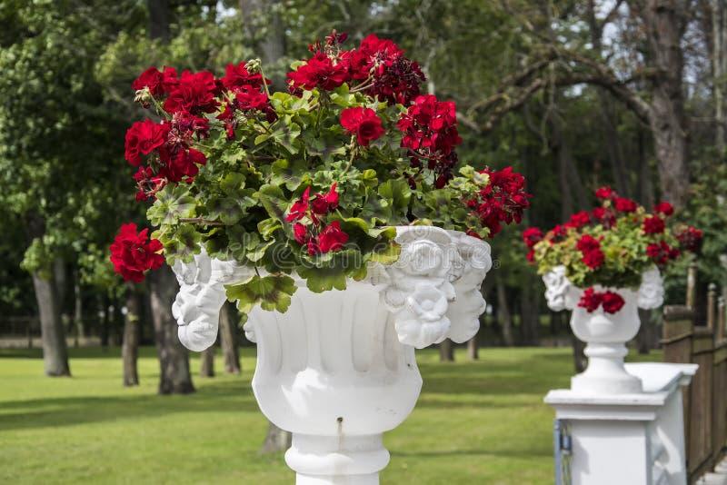 Tallinn Gardens stock photo