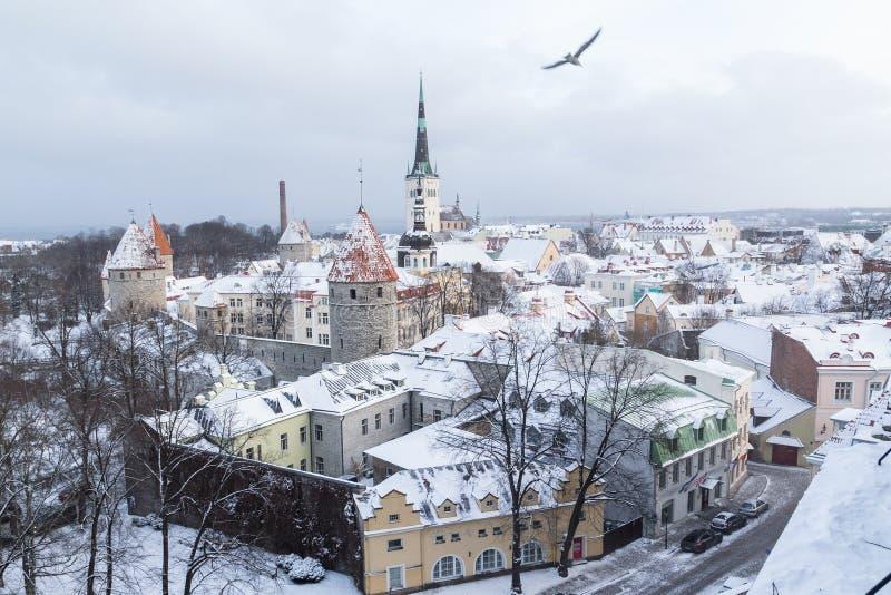 Tallinn horisont i vintern arkivfoton