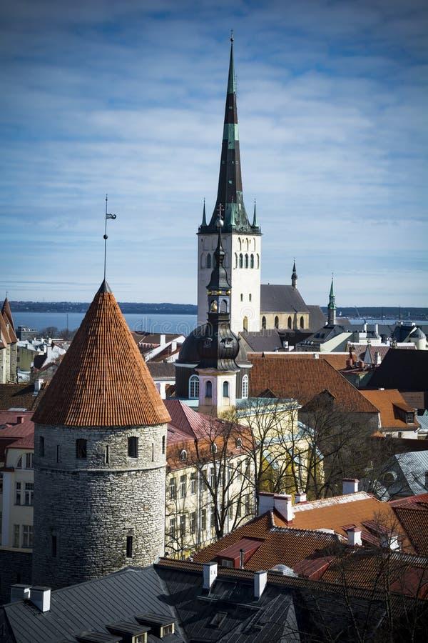 Tallinn huvudstad av Estland i det baltiskt royaltyfria foton