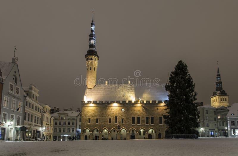 Tallinn im Winter lizenzfreie stockbilder