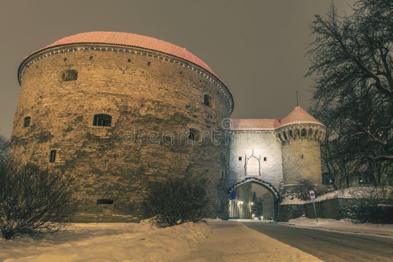 Tallinn im Winter stockfotos