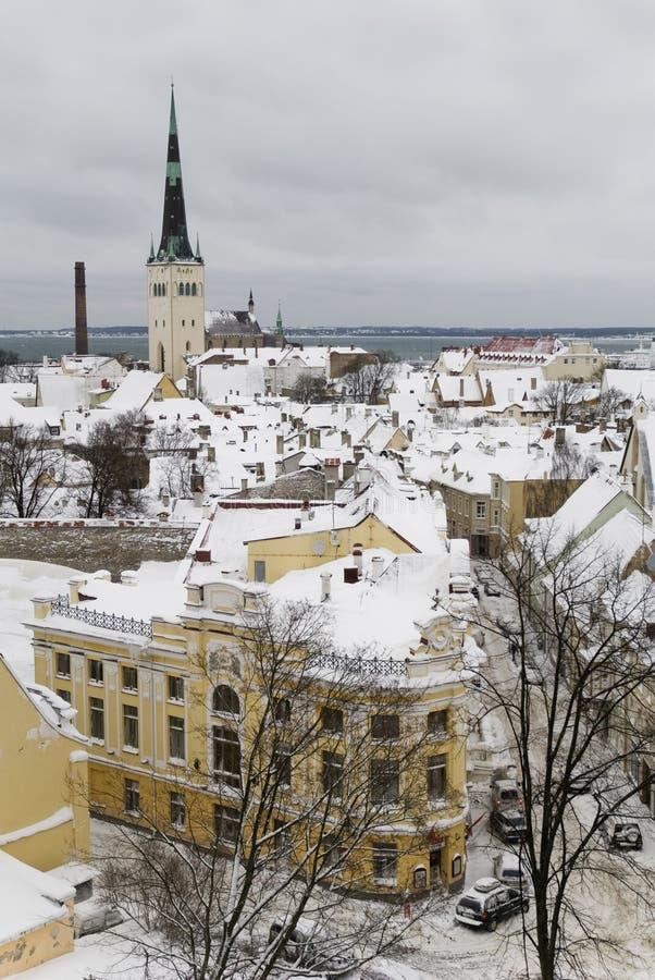 Tallinn, invierno   foto de archivo libre de regalías