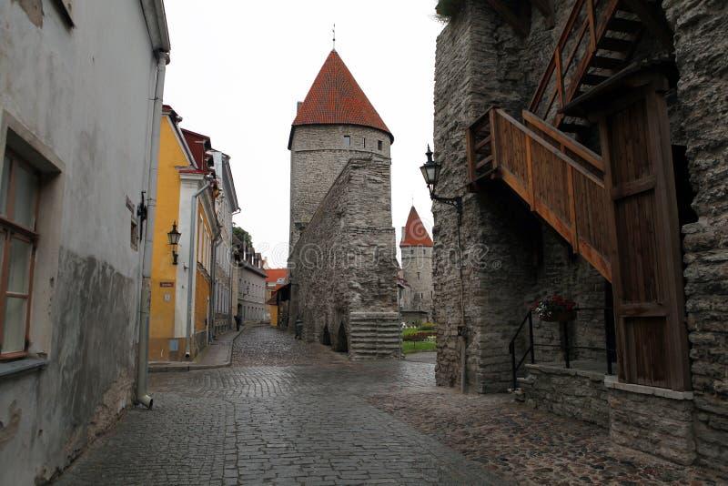 tallinn l'Estonie images libres de droits