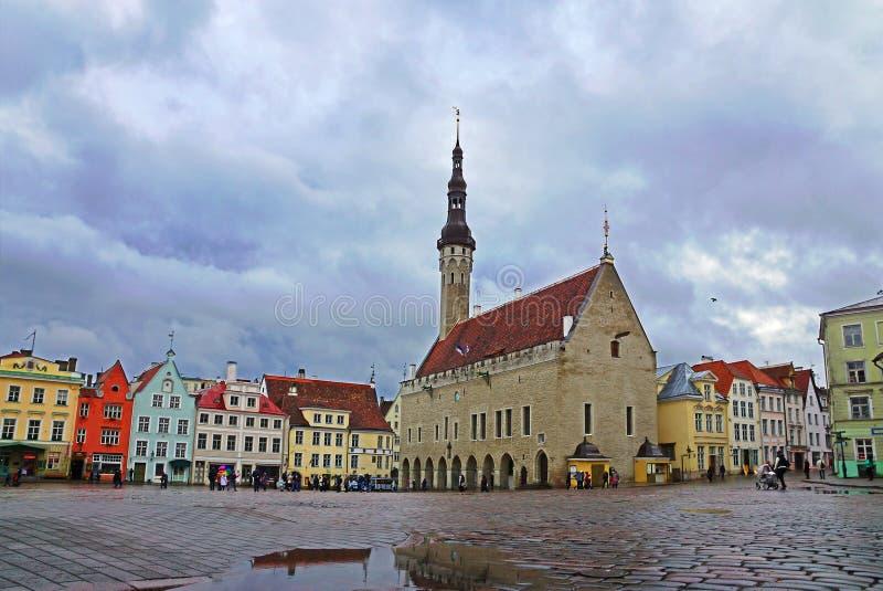 tallinn l'Estonie Grand dos d'hôtel de ville image stock
