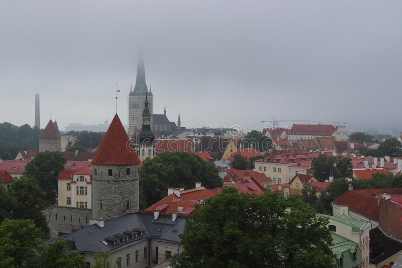 Tallinn muito nebuloso no verão no feriado imagens de stock royalty free