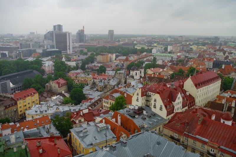 Tallinn Old Town, Εσθονία, πανοραμική θέα του βροχερού καιρού ε τι ριαραδοσιακέ κόκκινε ριλατίδε, εσαιβιακοί τοίχοι στοκ εικόνα με δικαίωμα ελεύθερης χρήσης