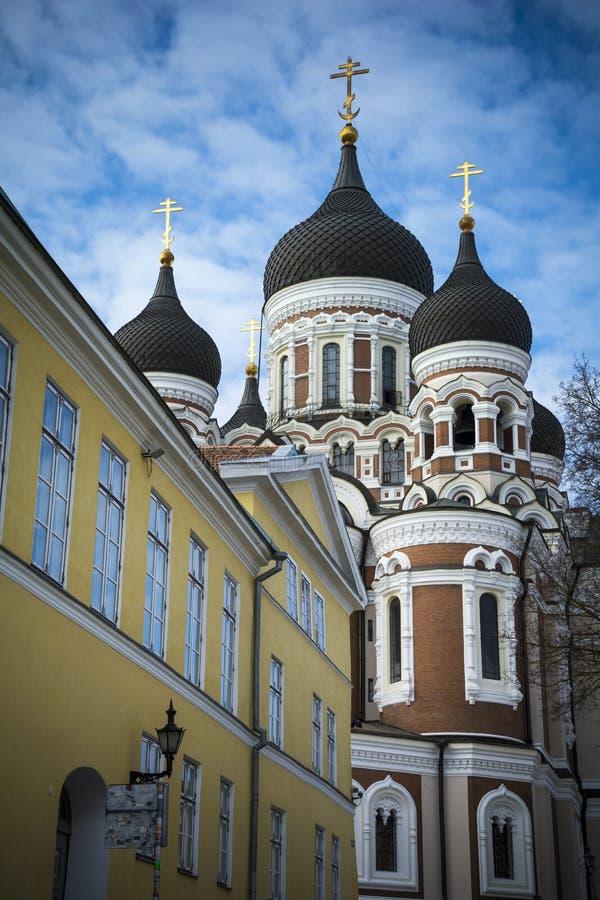 Tallinn ortodox domkyrka i medeltida gammal stad royaltyfria foton