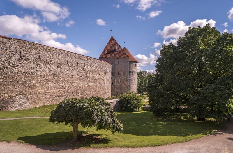 Tallinn - paredes de la ciudad fotografía de archivo