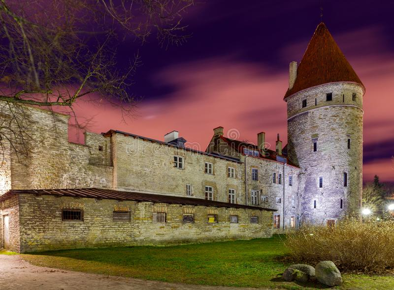 tallinn Stara forteca ściana zdjęcie royalty free
