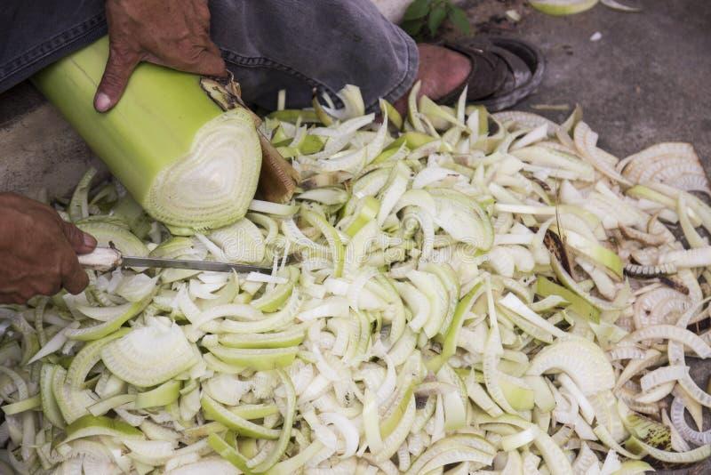 Download Tallo Del Plátano Del Corte Foto de archivo - Imagen de trabajador, cuchillo: 42436766