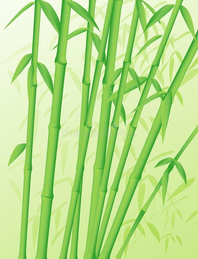 Tallos de bambú stock de ilustración