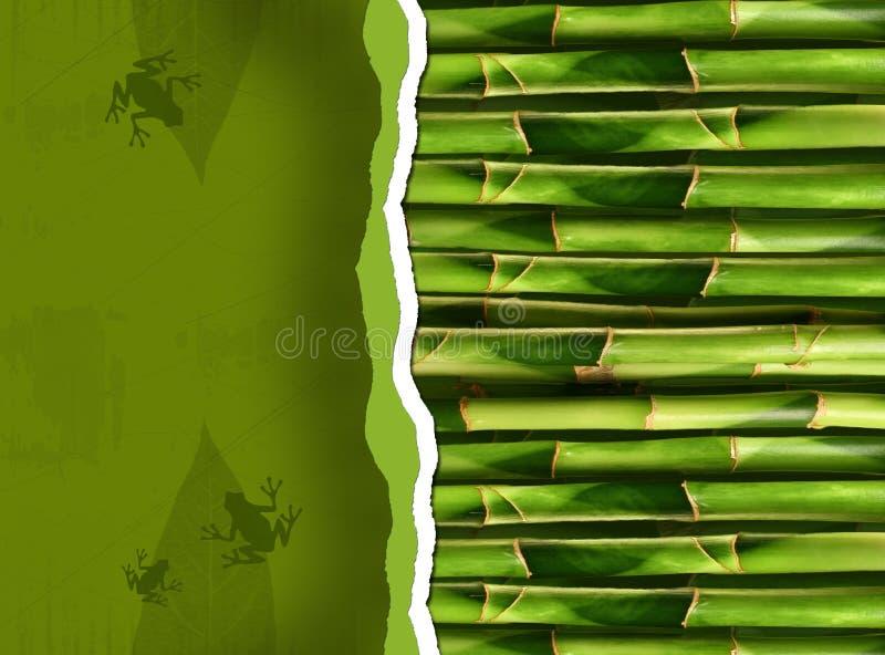 Tallos de bambú densos libre illustration