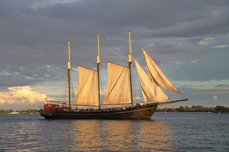 Tallship arkivfoton