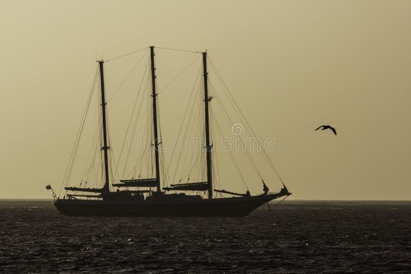 Tallship en la salida del sol fotos de archivo