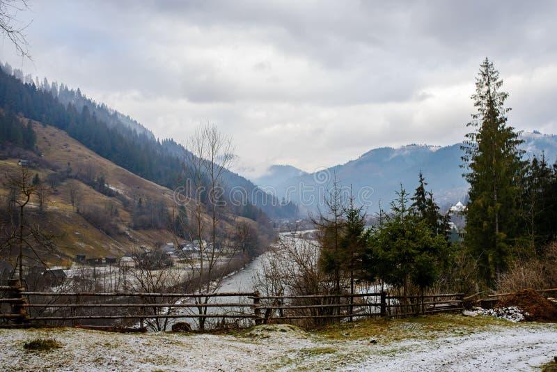 Tallskogstaket på bakgrunden av det Carpathian berget för vinter arkivfoton