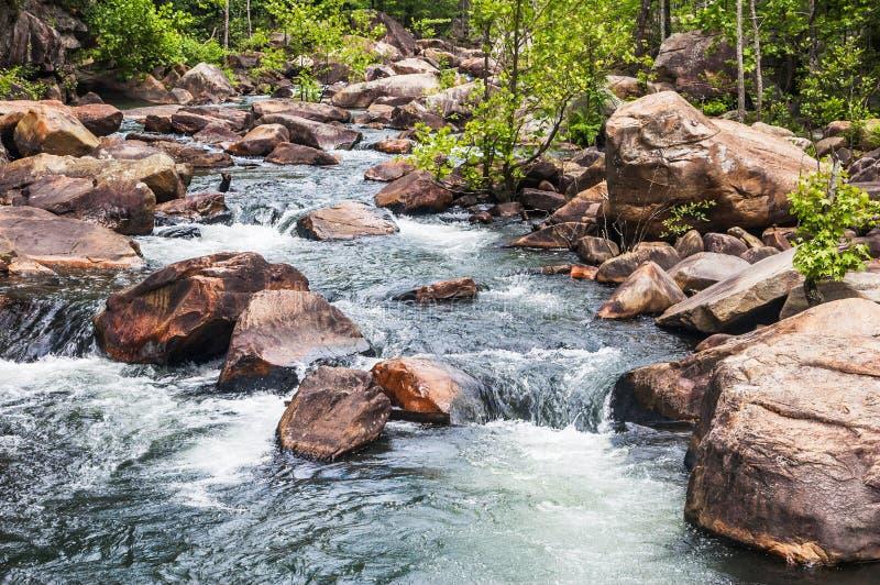 Tallulah Gorge whitewater fotografering för bildbyråer