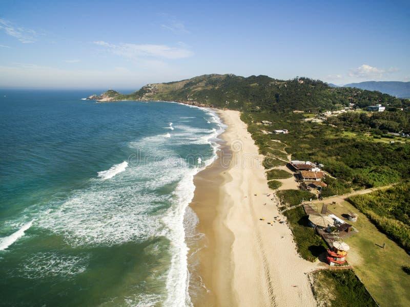 Talpa della Praia della talpa della spiaggia di vista aerea in Florianopolis, Santa Catarina, Brasile Luglio 2017 fotografia stock libera da diritti