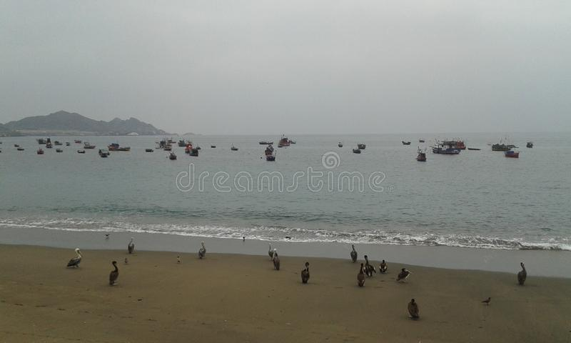 Taltal beach stock image