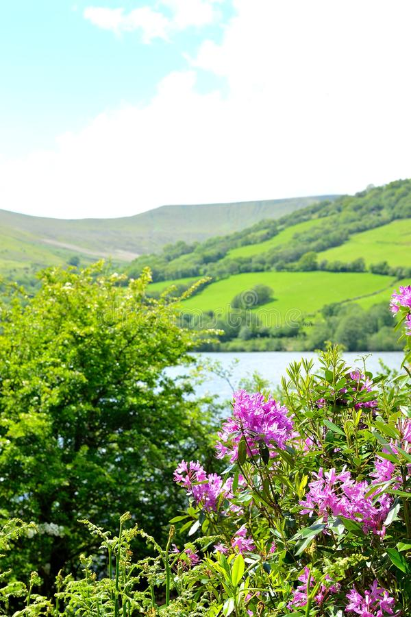 talybont-op vallei en reservoir stock foto's