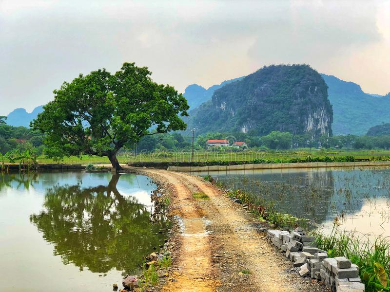 Tam Coc Countryside photo stock