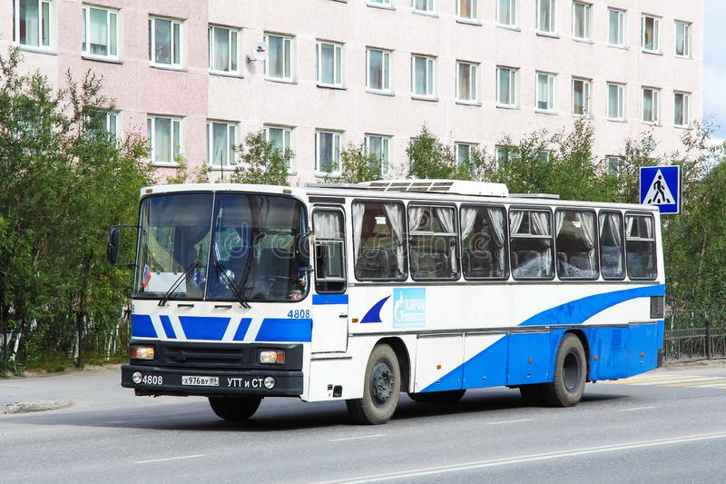 TAM 190A110 stockfoto