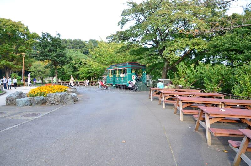 Tama zoo royalty free stock image