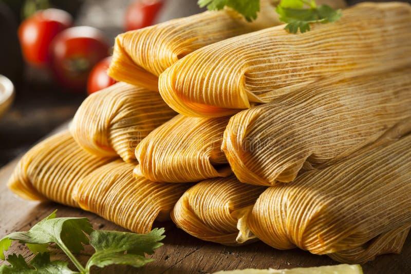 Tamales hechos en casa del maíz y del pollo fotografía de archivo