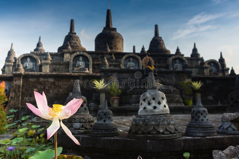 Taman Lumbini parkerar från höjden av templet komplexa Candi Borobudur på soluppgång i dimman Candi borobudur arkivfoton